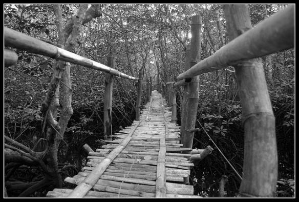 A Treacherous Path